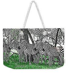 Zebras Weekender Tote Bag by Kathy Churchman
