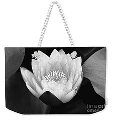 Weekender Tote Bag featuring the photograph Waterlily Rising  by John F Tsumas