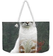 Zing The Cat Weekender Tote Bag