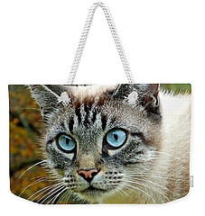 Zing The Cat Upclose Weekender Tote Bag