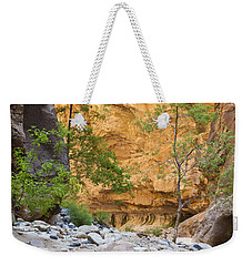 Weekender Tote Bag featuring the photograph Zion Narrows by Bryan Keil