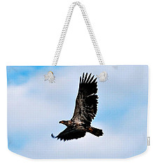Weekender Tote Bag featuring the photograph  Juvenile Bald Eagle by Peggy Franz