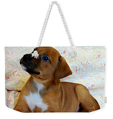 Weekender Tote Bag featuring the photograph   Take Me Home Please by Peggy Franz