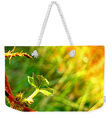 Weekender Tote Bag featuring the photograph A New Morning by Debbie Portwood