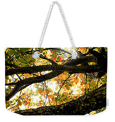 Beneath The Autumn Wolf River Apple Tree Weekender Tote Bag