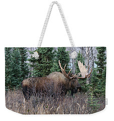 Weekender Tote Bag featuring the photograph Big Boy by Doug Lloyd