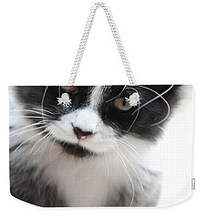 Cat In Chaotic Thought Weekender Tote Bag