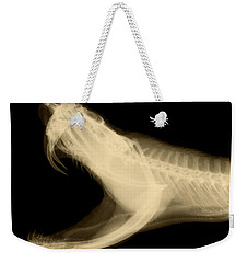 Eastern Diamondback Rattlesnake Weekender Tote Bag by Ted Kinsman