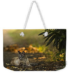 Evening Glow Weekender Tote Bag by Kim Henderson