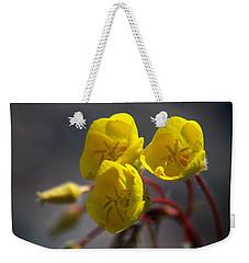 Desert Evening Primrose Weekender Tote Bag by Joe Schofield