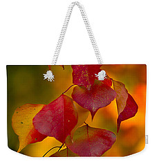 Weekender Tote Bag featuring the photograph Fall Color 1 by Dan Wells