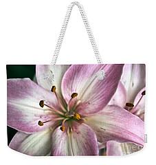 Pink Asiatic Lily Weekender Tote Bag