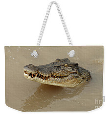 Salt Water Crocodile 3 Weekender Tote Bag by Bob Christopher