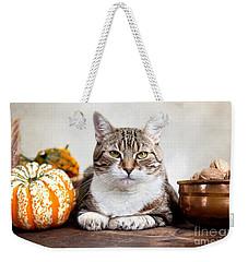 Cat And Pumpkins Weekender Tote Bag by Nailia Schwarz