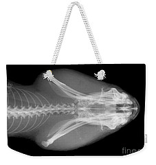 Eastern Diamondback Rattlesnake Head Weekender Tote Bag by Ted Kinsman