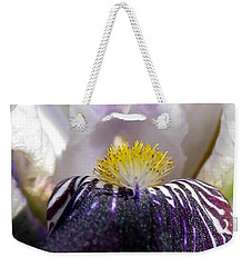 Weekender Tote Bag featuring the photograph Miniature Tall Bearded Iris Named Consummation by J McCombie