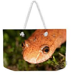 Spring Salamander Weekender Tote Bag by Ted Kinsman