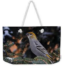 Female Pine Grosbeak Weekender Tote Bag