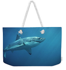 Great White Shark Carcharodon Weekender Tote Bag by Mike Parry