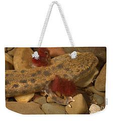 Mudpuppy Weekender Tote Bag by Ted Kinsman
