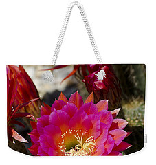 Pink Cactus Flowers Weekender Tote Bag by Jim and Emily Bush