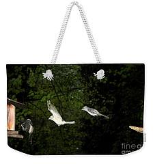 Tufted Titmouse In Flight Weekender Tote Bag