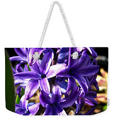 Weekender Tote Bag featuring the photograph Hyacinth Named Peter Stuyvesant by J McCombie