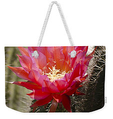 Red Cactus Flower Weekender Tote Bag by Jim and Emily Bush