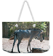 Lincoln Park Zoo In Chicago Weekender Tote Bag