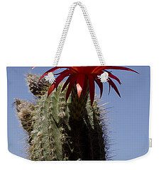Pink Cactus Flower Weekender Tote Bag by Jim and Emily Bush