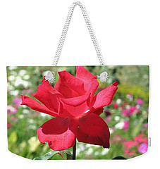 Weekender Tote Bag featuring the photograph A Beautiful Red Flower Growing At Home by Ashish Agarwal