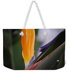 A Bird Of Paradise I Weekender Tote Bag