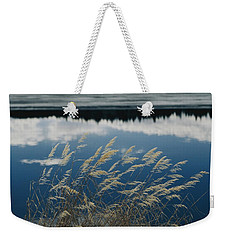 A Clump Of Grasses Is Framed Weekender Tote Bag