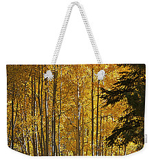 A Golden Trail Weekender Tote Bag by Phyllis Denton