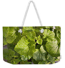Weekender Tote Bag featuring the photograph A Green Leafy Vegetable Plant After Watering In Bright Sunrise by Ashish Agarwal