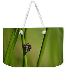 Weekender Tote Bag featuring the photograph A Jumper In The Grass by JD Grimes