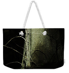 Weekender Tote Bag featuring the photograph A Life Full Of Shadows by Rebecca Sherman