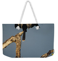 A Male Anhinga Perches On A Tree Stump Weekender Tote Bag