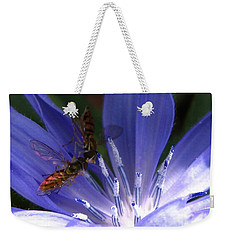Weekender Tote Bag featuring the photograph A Quiet Moment On The Chicory by J McCombie