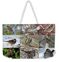 A Study In Sparrows Weekender Tote Bag