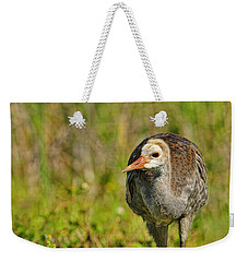 A Young Sandhill Crane Weekender Tote Bag