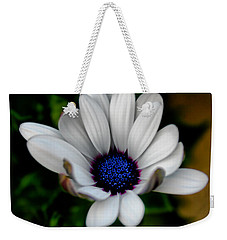 Weekender Tote Bag featuring the photograph African Daisy by Lynne Jenkins