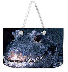 African Dwarf Crocodile Weekender Tote Bag by Dante Fenolio