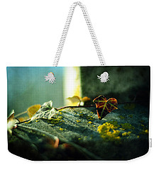 Weekender Tote Bag featuring the photograph After Life by Rebecca Sherman