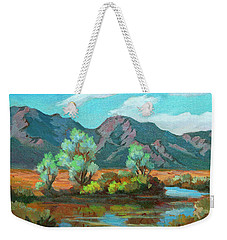After The Rain Weekender Tote Bag by Diane McClary