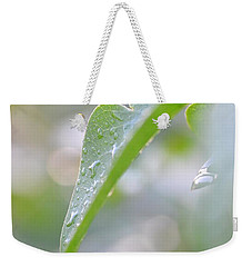 Weekender Tote Bag featuring the photograph After The Rain by JD Grimes