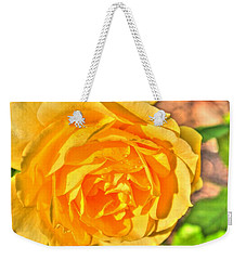 Weekender Tote Bag featuring the photograph After The Rain by Michael Frank Jr