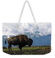 Alaskan Buffalo Weekender Tote Bag by Katie Wing Vigil