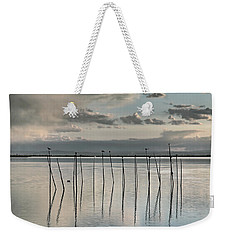 Albufera Gris. Valencia. Spain Weekender Tote Bag