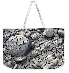 Weekender Tote Bag featuring the photograph All Dried Out by Nareeta Martin